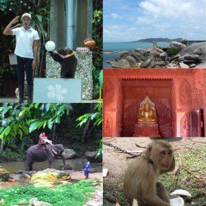サムイ島 半日サファリ+水族館 サムイアドベンチャー