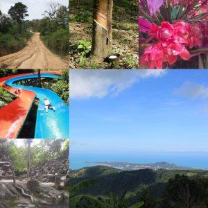 サムイ島 1日ジャングルサファリツアー マウンテン中心