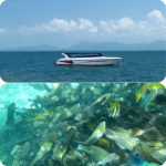 サムイ島発スピードボートで行くタオ島ナンユアン島スノーケルツアー ナンユアン島ランチ