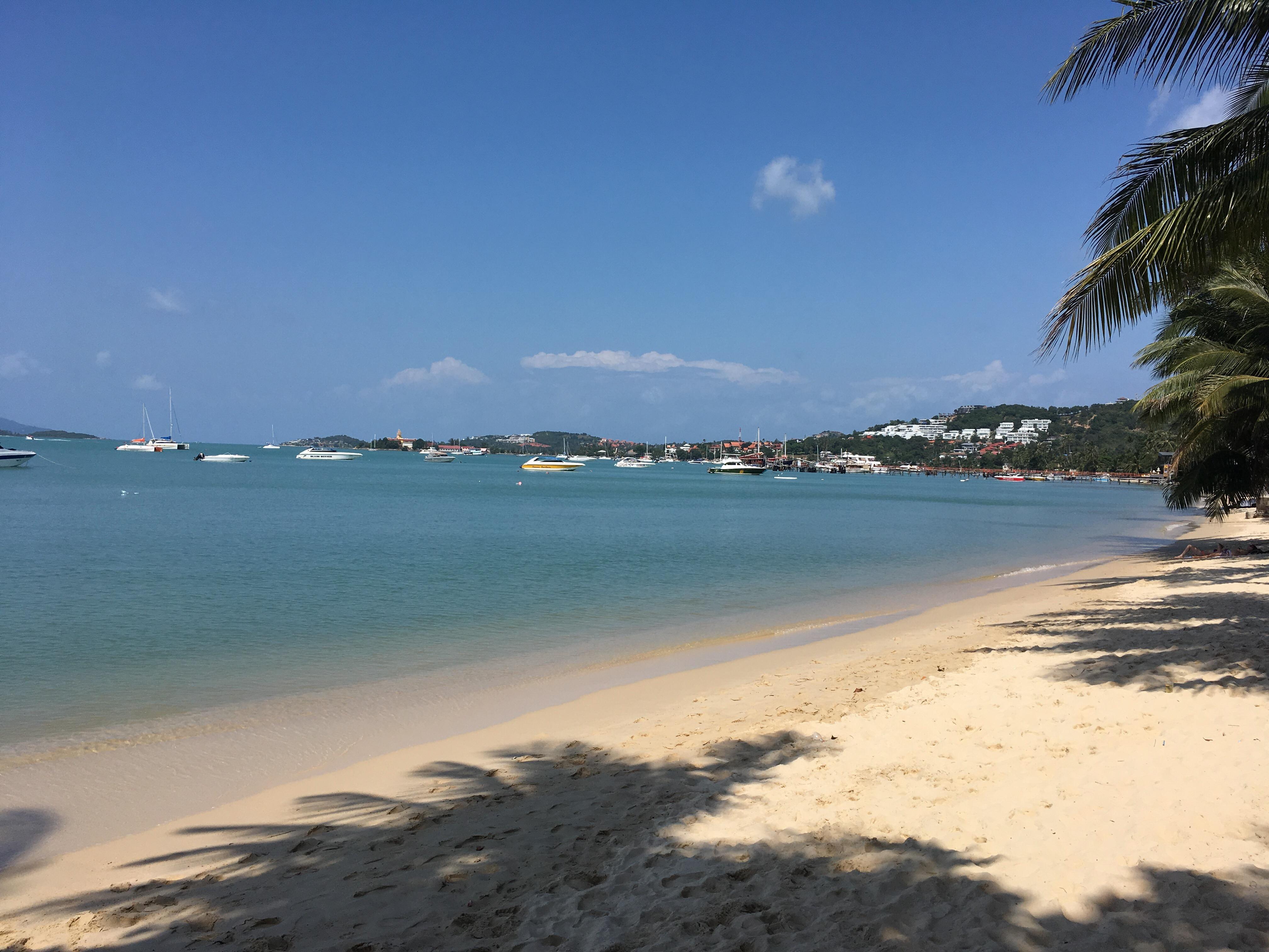 今日のサムイ島 2月17日 バンラックビーチ